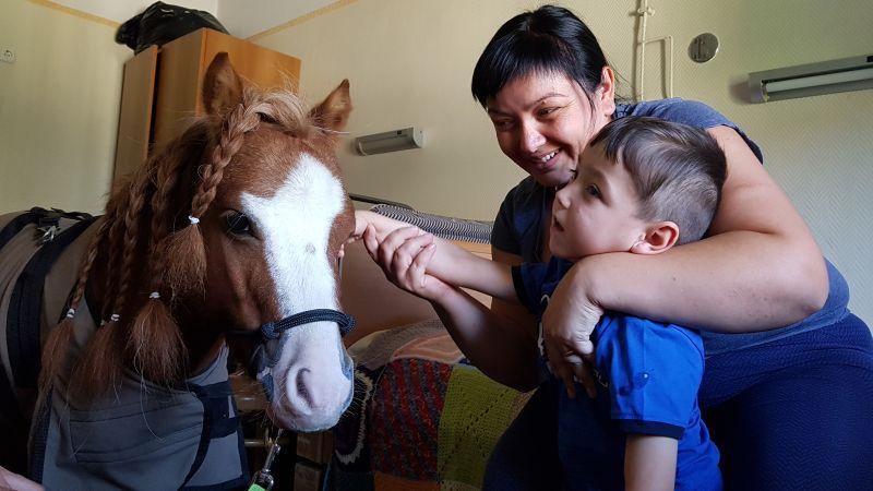 Miniló terápia Bethesda Gyermekkórház